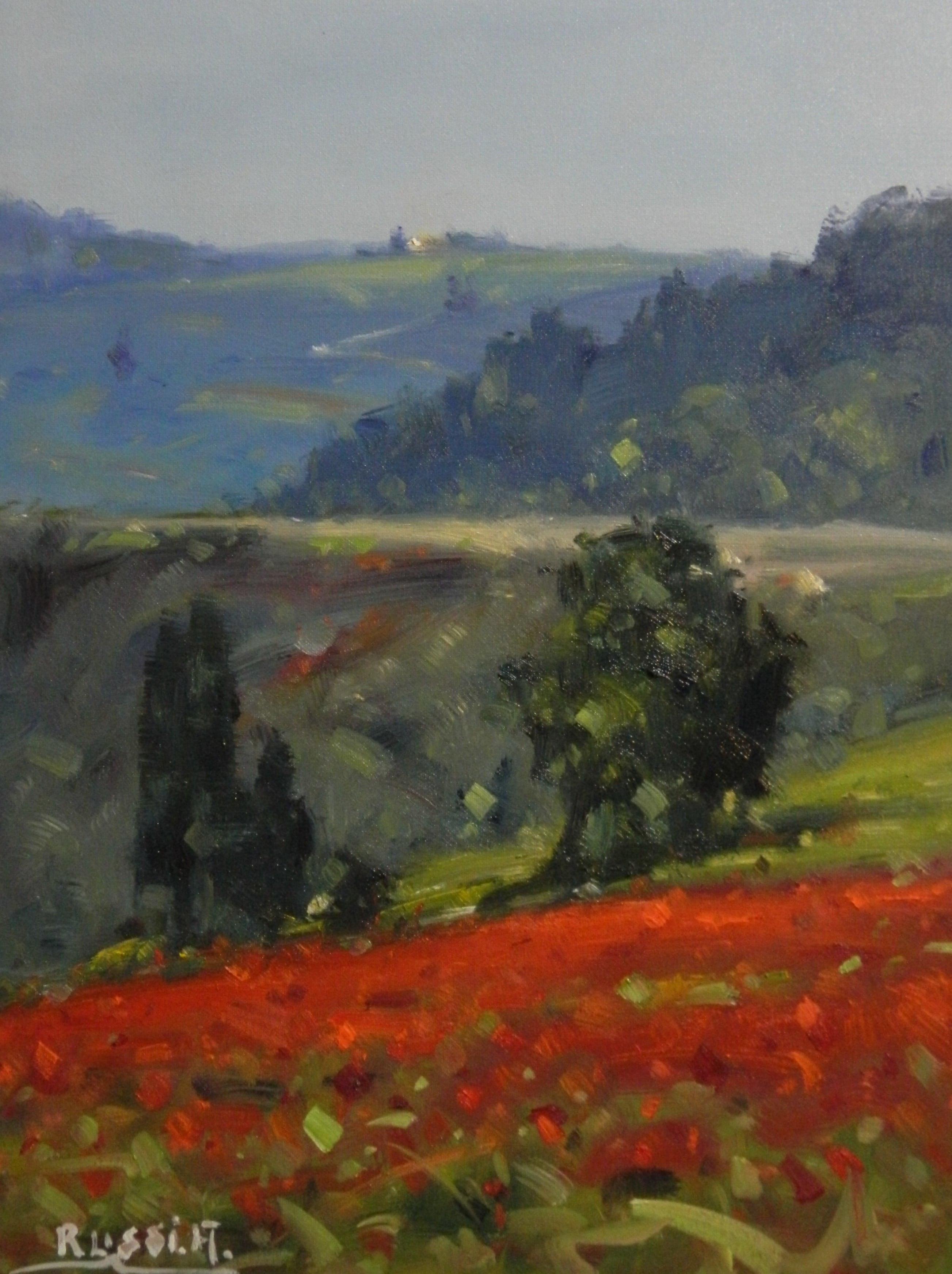 Antonio Poppies in Tuscany 30x40
