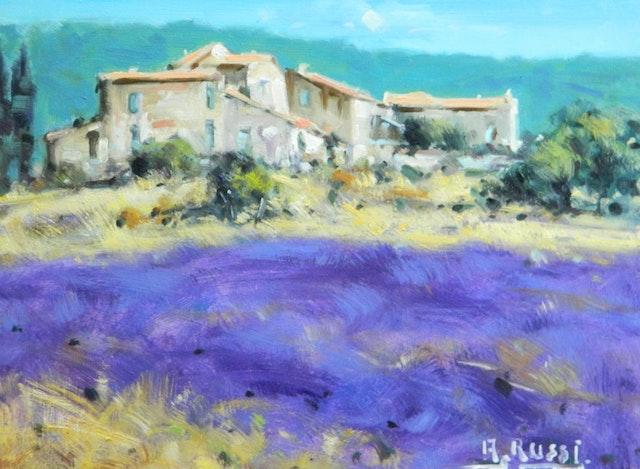 Antonio Provence 40x30