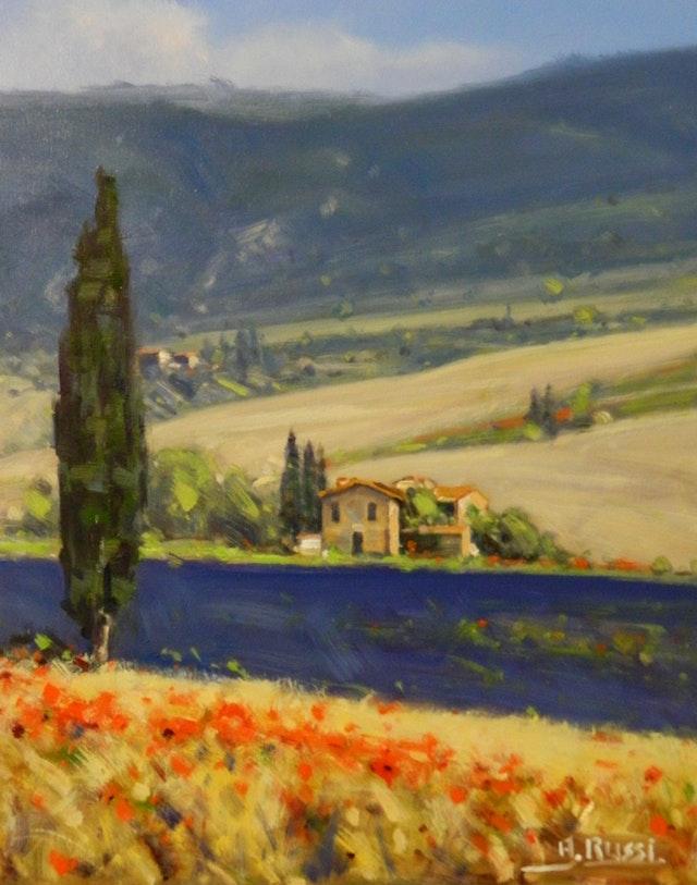 Antonio Tuscany fields 40x50