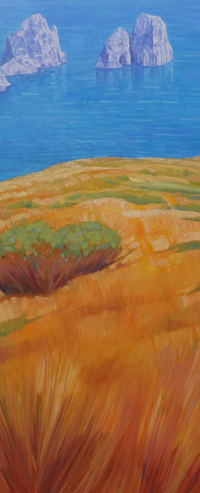 Claudio Capri Island 40x100