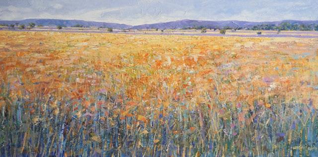 Claudio On the Fields 120x60