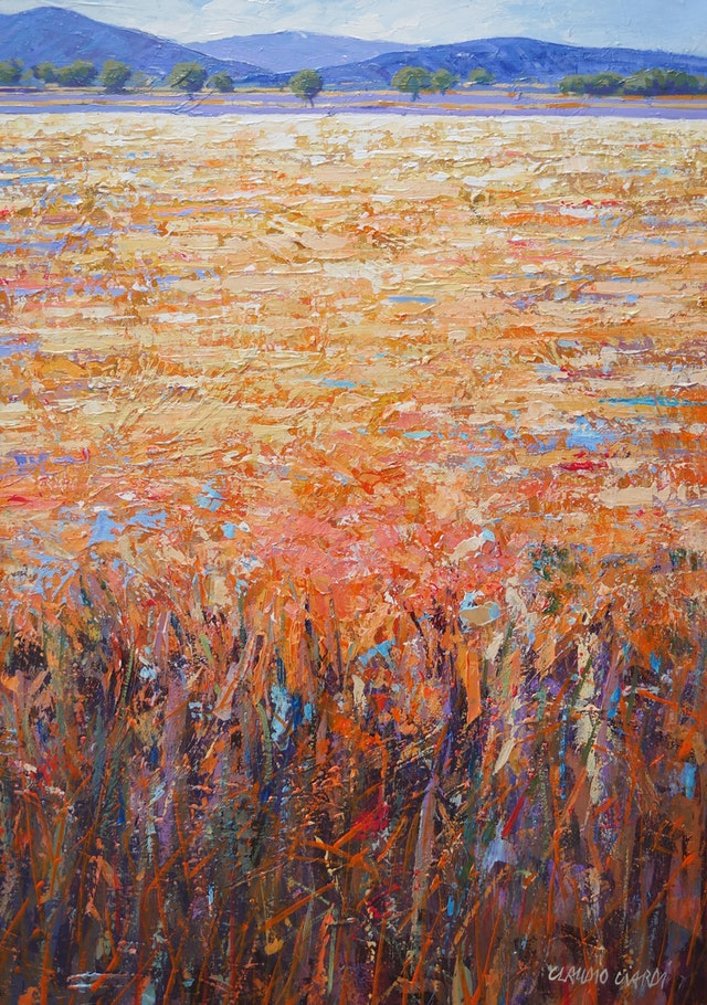 Claudio The Sun on the Fields 50x70