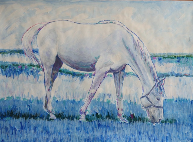 Claudio White Horse 100x70