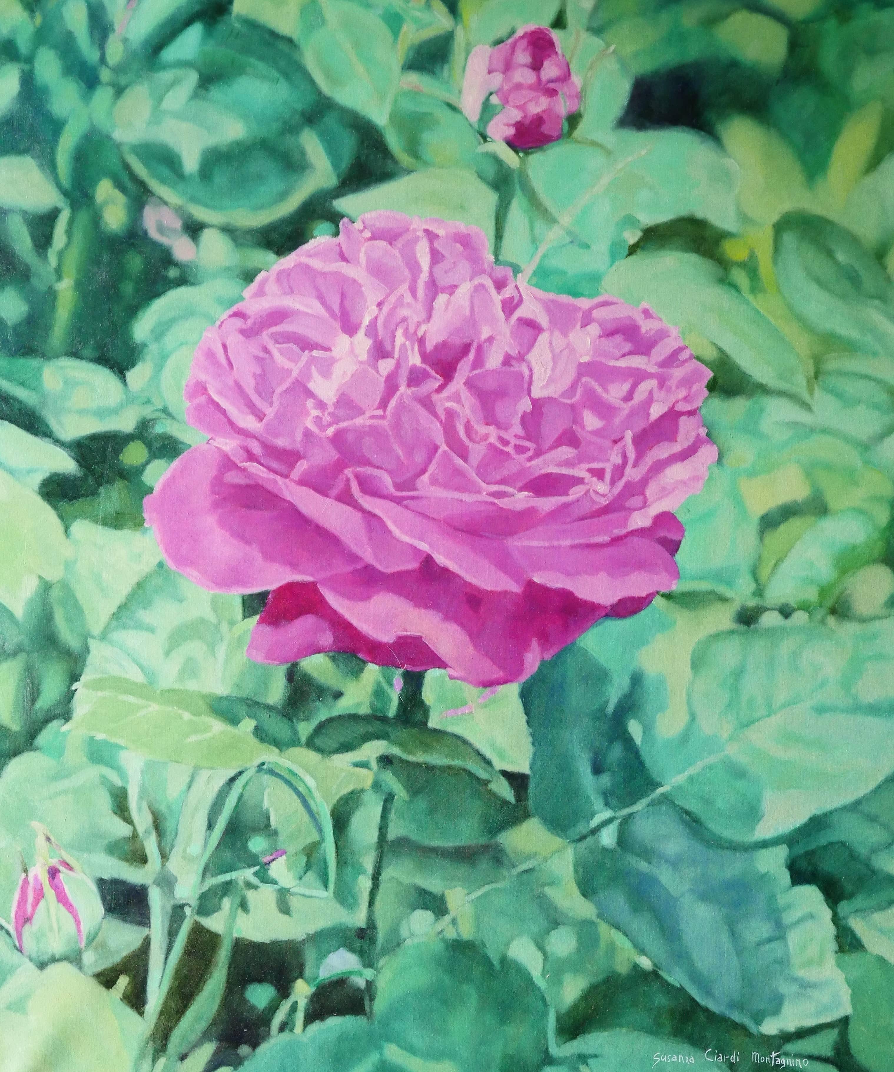Susanna Rose 70x86